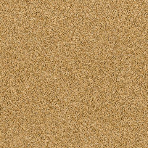 image for Spun gold