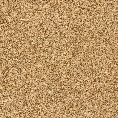 image for Egyptian sand