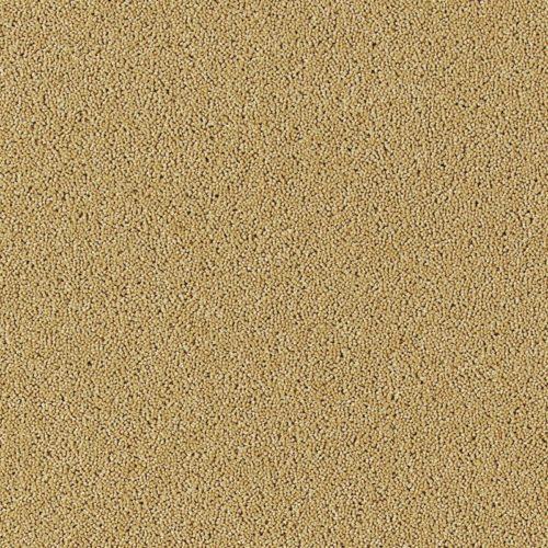 image for Kalahari desert