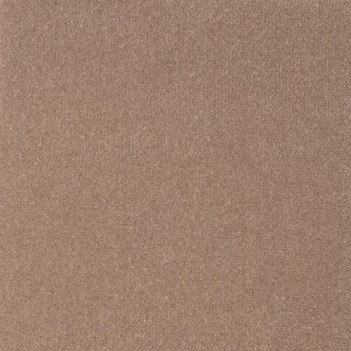 image for Albert Taupe